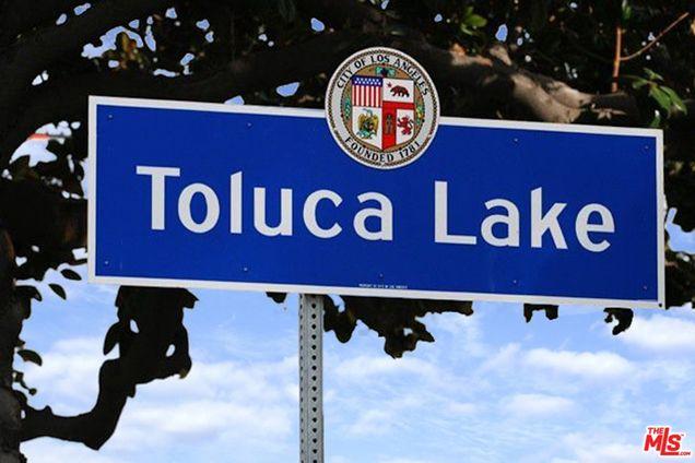 Toluca lake web design